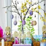 eggs (5)
