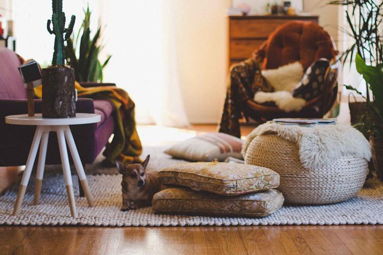 blogger-details-home (6)