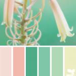 nature colors_decofairy (7)